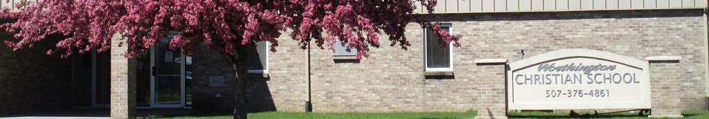 School in spring_closeup